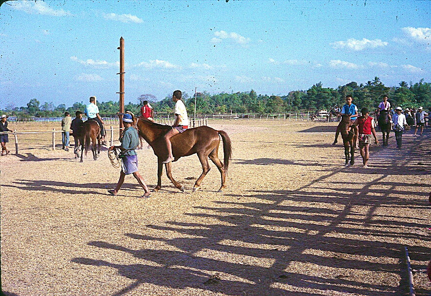 1963-mahasarakam-051