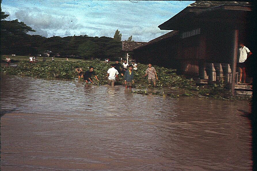 1963-mahasarakam-070